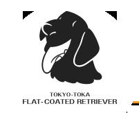 東京都下フラットコーテッド・レトリーバー